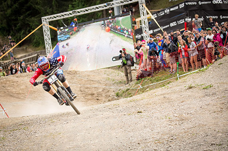 DHI-WC-2015-Aaron-Gwin_by_Michael-Marte