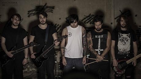 Vultures-Photo