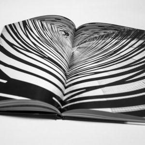 attraper-au-vol-book-12